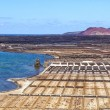 Salt refinery, Saline from Janubio, Lanzarote, Spain - Stock Photo