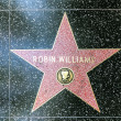 Robin Williams's star on Hollywood Walk of Fame - Stock Photo