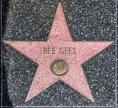 Bee gees звезда на голливудской аллее славы — Стоковое фото