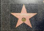 David Hasselhoffs star on Hollywood Walk of Fame — Stock Photo