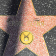 Errol Flynn's star on Hollywood Walk of Fame - Stock Photo
