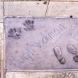 Handprints in Hollywood Boulevard in the concrete of Chinese The — Stock Photo #11644504