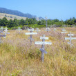 Old crosses at the historic orthodox cemetery of Fort Ross — Stockfoto