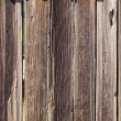 Fort Ross wooden walls - 