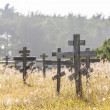 Old crosses at the historic orthodox cemetery of Fort Ross — Foto Stock