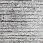 Vieux mur de briques historique — Photo