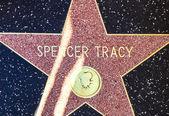 Xxx 的明星在好莱坞散步的名望 — 图库照片