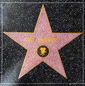 The Muppets star on Hollywood Walk of Fame — Stock Photo