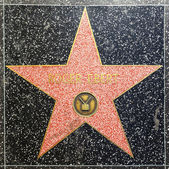 Roger Ebert's star on Hollywood Walk of Fame — Stock Photo