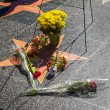 Michael Jackson's star on the Hollywood Walk - Zdjęcie stockowe