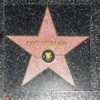 Fay Dunaways star on Hollywood Walk of Fame - ストック写真