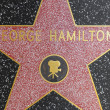 George Hamiltons star on Hollywood Walk of Fame - Lizenzfreies Foto