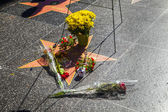Michael Jackson's star on the Hollywood Walk — Stock Photo