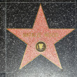 Natalie Woods star on Hollywood Walk of Fame - ストック写真