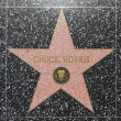 Постер, плакат: Chuck Norris star on Hollywood Walk of Fame