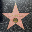 LizMinnellis star on Hollywood Walk of Fame — Stock Photo #11945192
