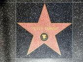 Peter Fondas star on Hollywood Walk of Fame — Stock Photo