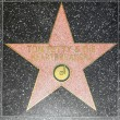 Tom Petty & the Heartbreakers star on Hollywood Walk of Fame - Stock Photo