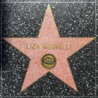 LizMinnellis star on Hollywood Walk of Fame — Stock Photo #11961942