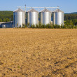 Field in harvest with silo - Stock Photo