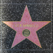 LizMinellis star on Hollywood Walk of Fame — Stock Photo #12347573