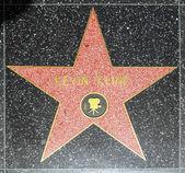 кевин klines звезда на голливудской аллее славы — Стоковое фото