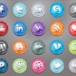 Stock Vector: Oval social icons