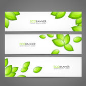 Set of eco banners — Stock Vector
