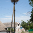 Stork's nest on village street — стоковое фото #11412159