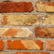 Brick background — Stock Photo #11771865