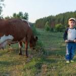 Young shepherd — Stock Photo