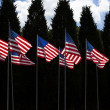 Many American Flags - Zdjcie stockowe