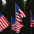 American Flags - Zdjcie stockowe