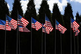 Many American Flags — Stock Photo