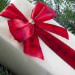Christmas Gift — Stock Photo #11553415