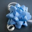 Blue Bow — Stock Photo