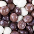 Chocolate Covered Kruidnoten — Stock Photo