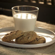 Cookies for Santa — Stock Photo #11974162