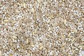 Trama di grano — Foto Stock