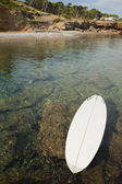 Stand Up Paddle Surf — Stock Photo