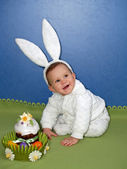 The baby in a suit of the hare with an easter Easter cake — Stock Photo