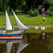 Feeding of swans in park of of Guryevsk of Kaliningrad region, Russia — Stockfoto #11391708