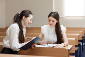 Two students talk — Stock Photo
