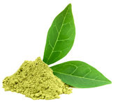 Green powder matcha tea — Stock Photo