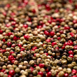 Red, black, green and white peppercorns, shallow dof — Stock Photo