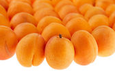 Apricots background partly isolated on white, full frame, shallo — Stock Photo