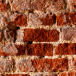 Very very old brick wall, closeup, natural — Stock Photo