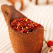 Red chillies paper flakes in curved wooden bowl and camel carava — Stock Photo