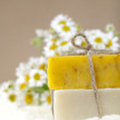 Homemade soap bars with camomile flowers and towel, — Stock Photo