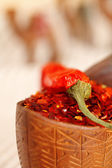 Red chillies paper in curved wooden bowl and camel caravan silh — Stock Photo